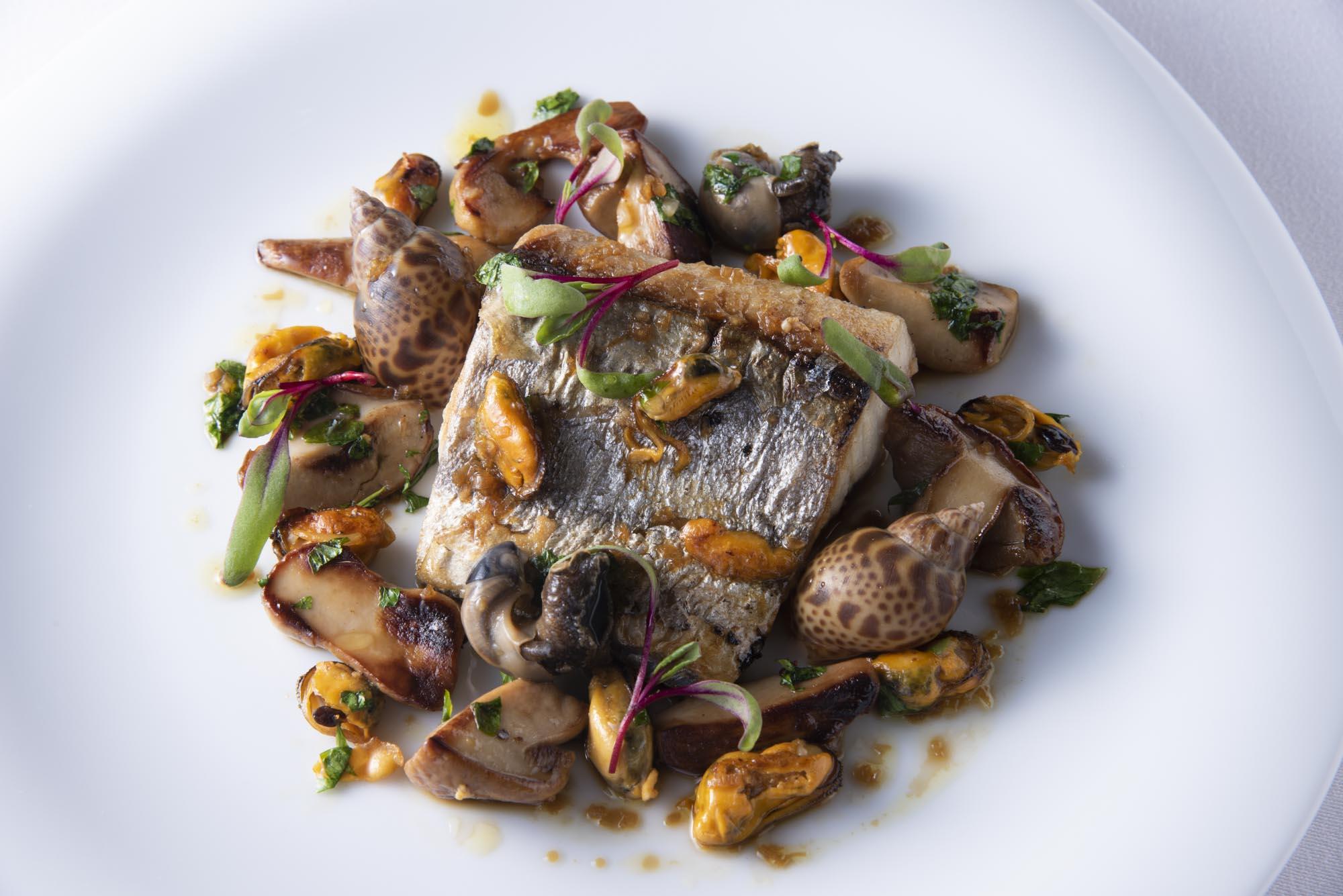 サワラの塩焼き、バイ貝、ムール貝